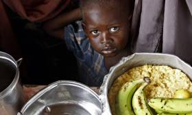 GDPN: Improving nutrition hub  The economic rationale for investing in undernutrition